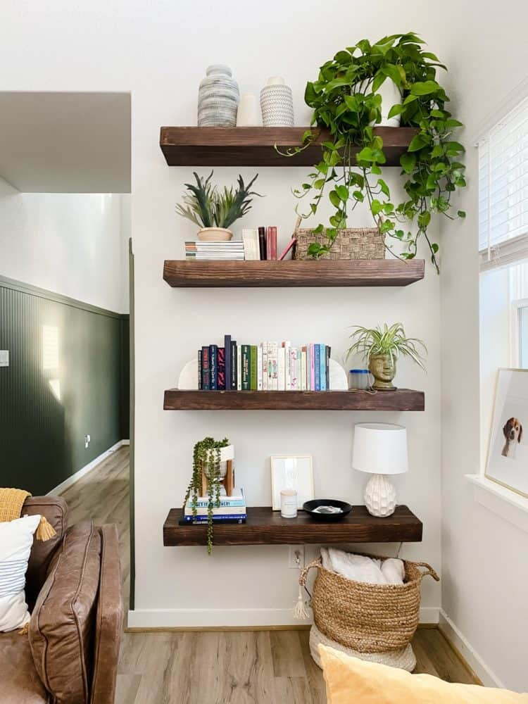 floating shelves with multiple plants