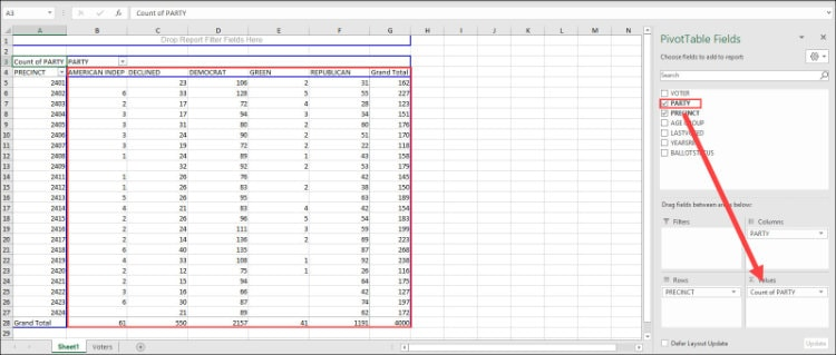 Pivot table with populated fields columns & rows.