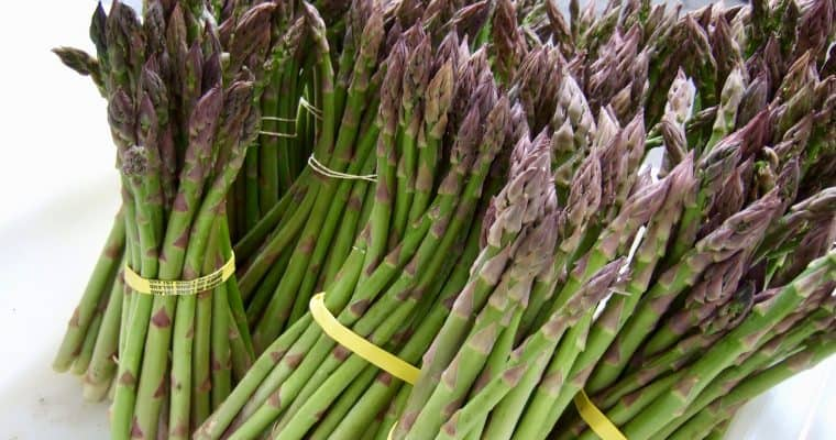 Asparagus: Our Ultimate Guide to 10 Wonderful Ways to Cook the Season's Most Highly Awaited Vegetable