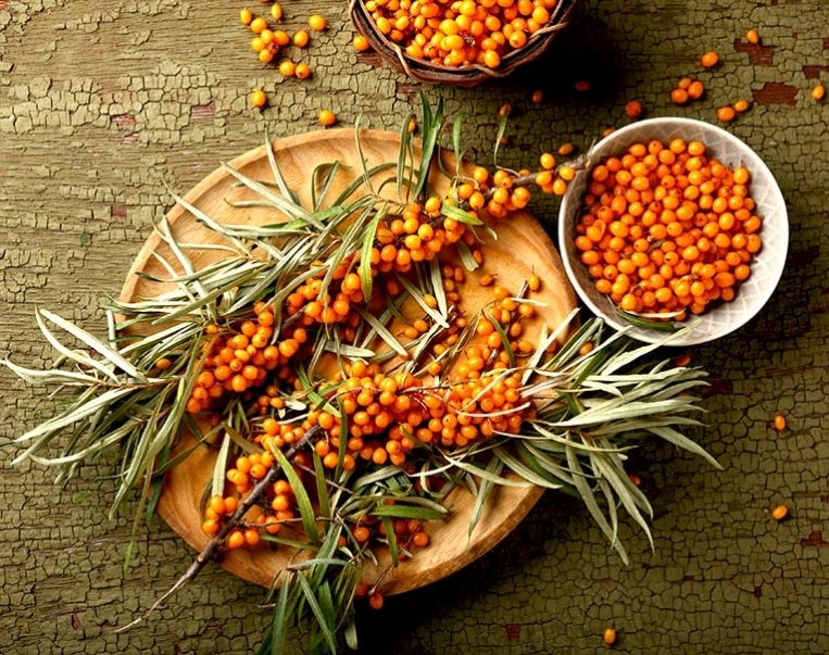 Two branches of ripe sea buckthorn on wood plate