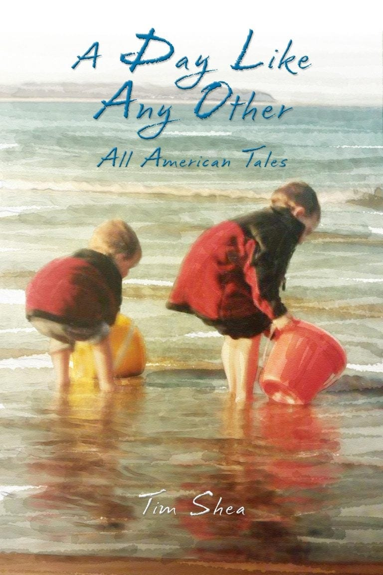 A-Day-Like-Any-Other-cover By Author Tim Shea