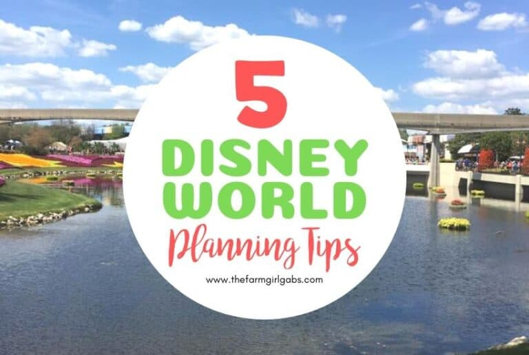 Practical Disney World Planning Tips