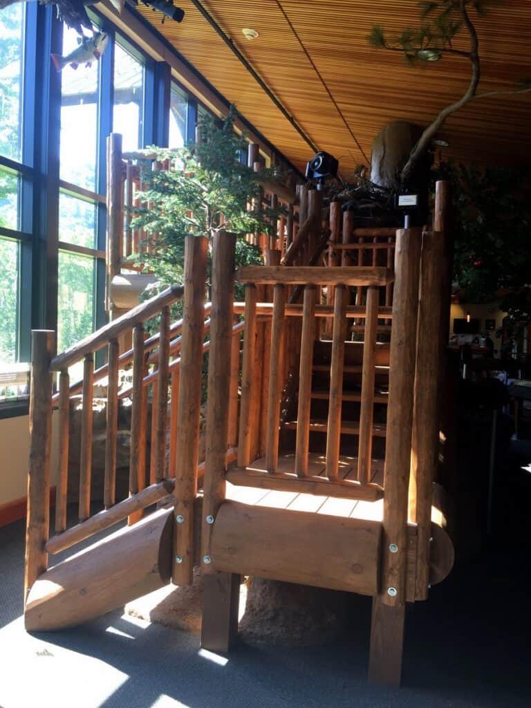 sinnemahoning state park interior viewing deck