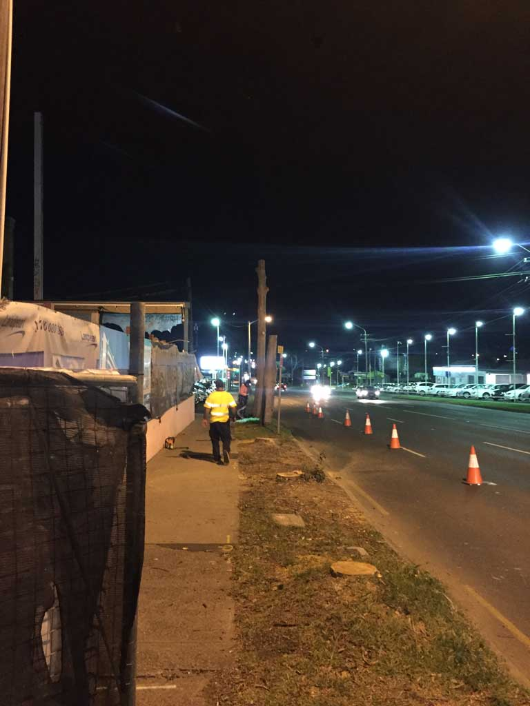 Homebush Night Tree Removal - After