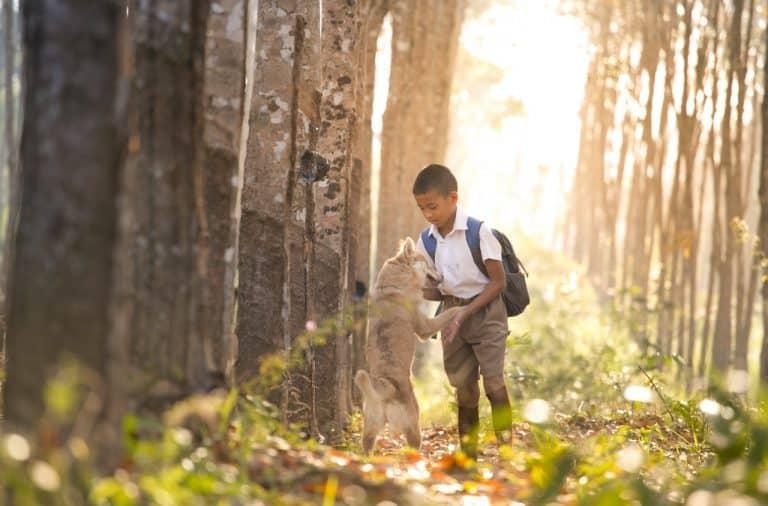 hond naar school