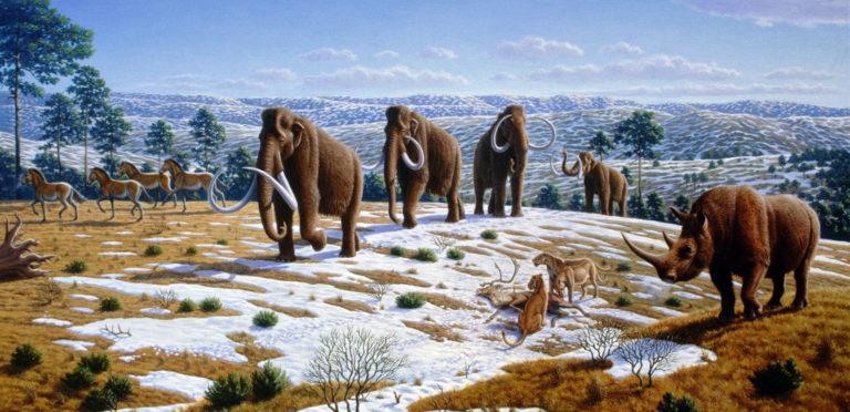 """""""Il più grande uomo scimmia del Pleistocene"""": una lezione di storia indimenticabile"""