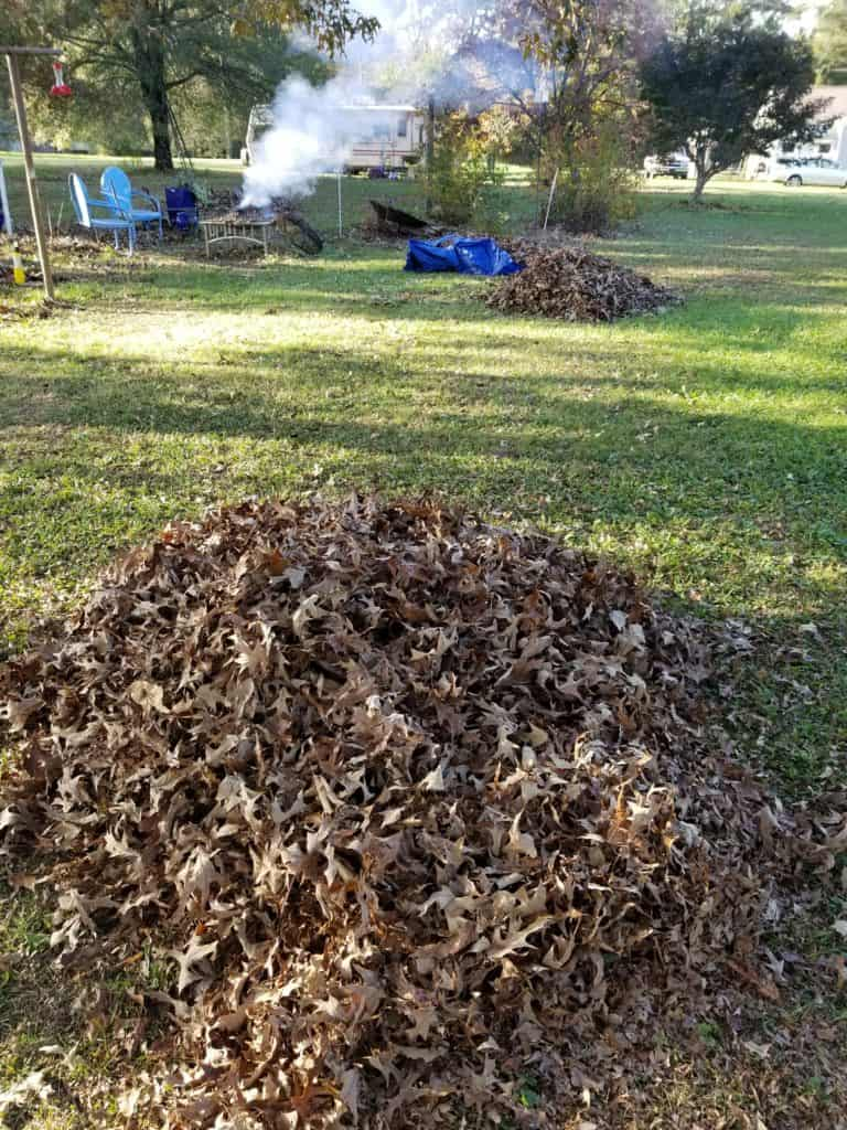 How to Begin Composting, Start your compost pile in the fall when you begin raking leaves