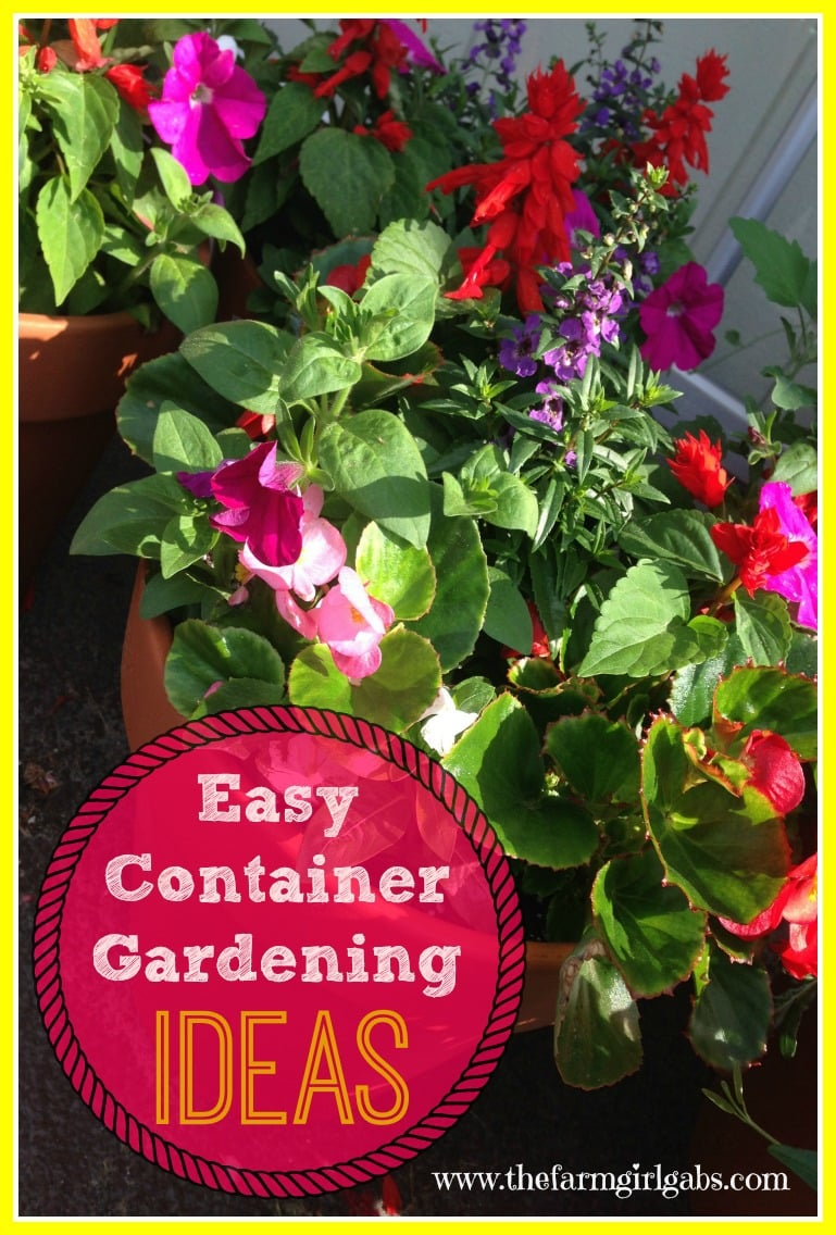 Simple and easy container gardening ideas for flowers, herbs and vegetables.