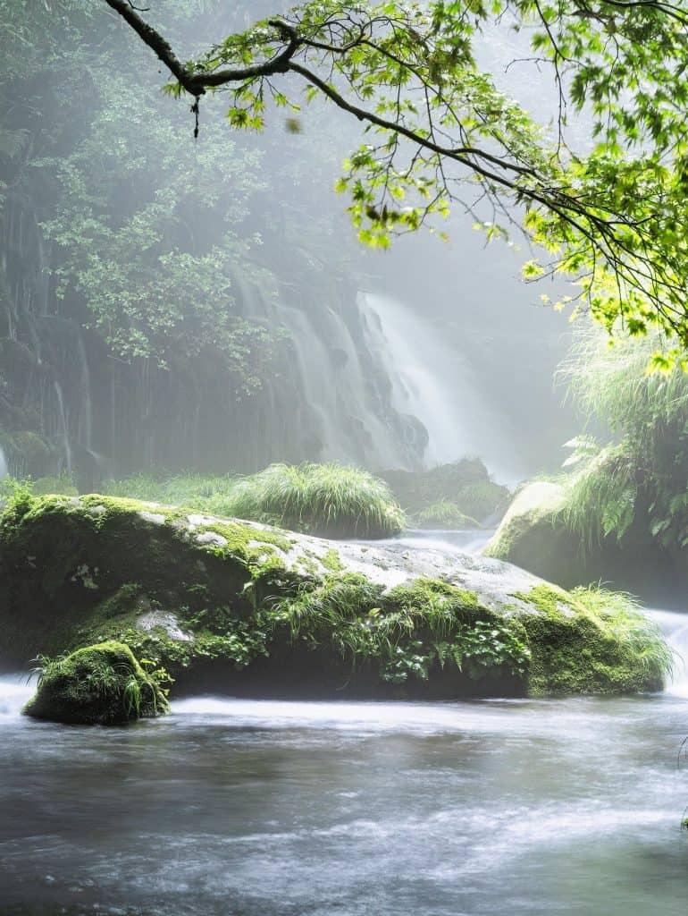 Urlaub am oder auf dem Fluss und viel Wissen für Fluss-Fans