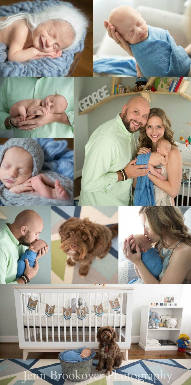 newborn session at home featuring colors of the nursery, cornflower blue, green, gray and white (cute puppy, too)
