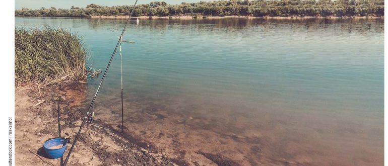 Можно ли ловить на фидер или спиннинг в нерест