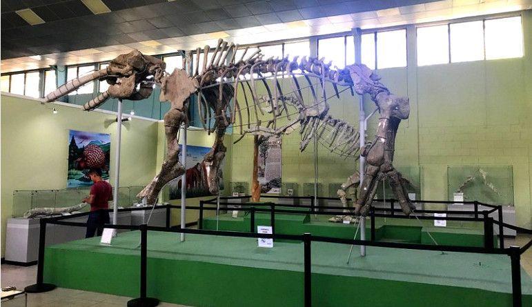 Interior del Museo Roberto Wookfolk en Zacapa