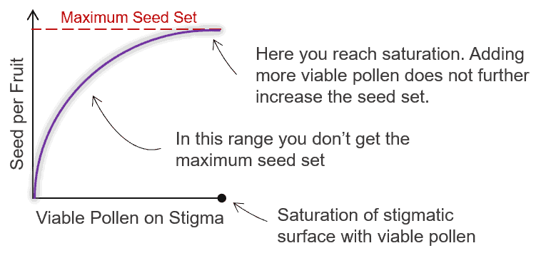 visualisation of a pollination saturation model
