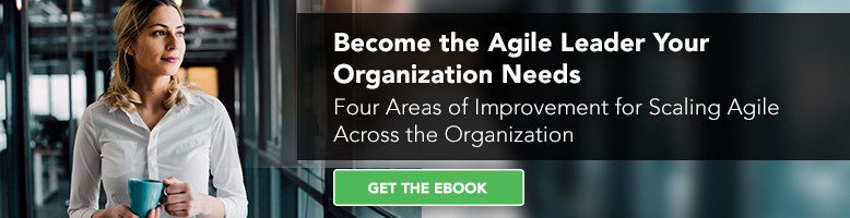 Become the Agile Leader your Organization Needs eBook