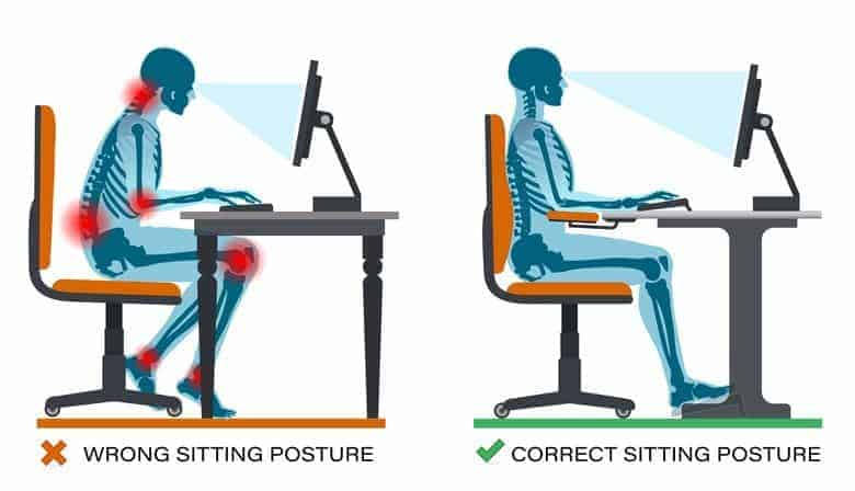 Basic Ergonomic Sitting Posture