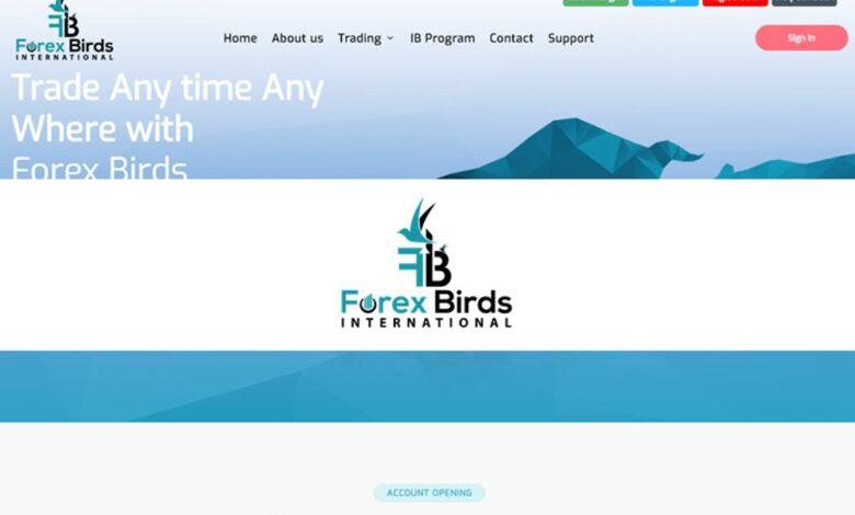 Forex Birds