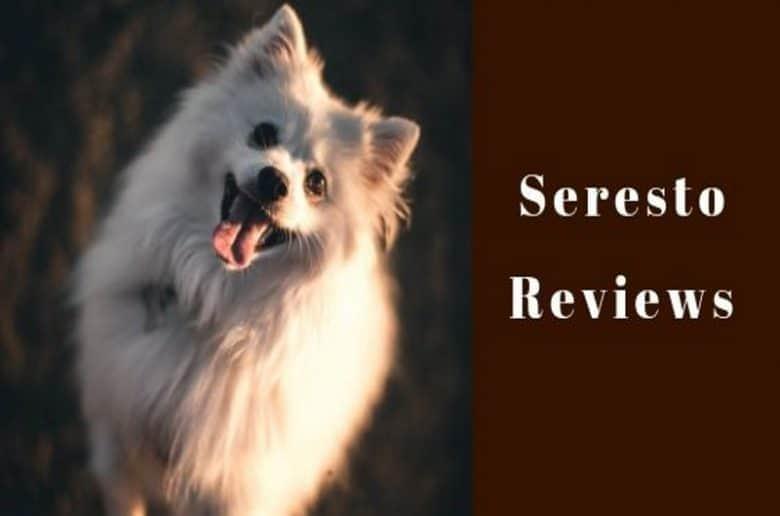 seresto reviews