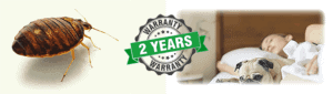 2 year warranty on our bed bug services