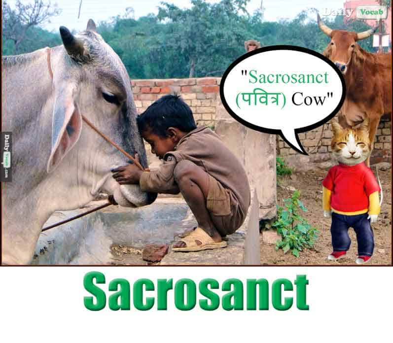 sacrosanct meaning in Hindi