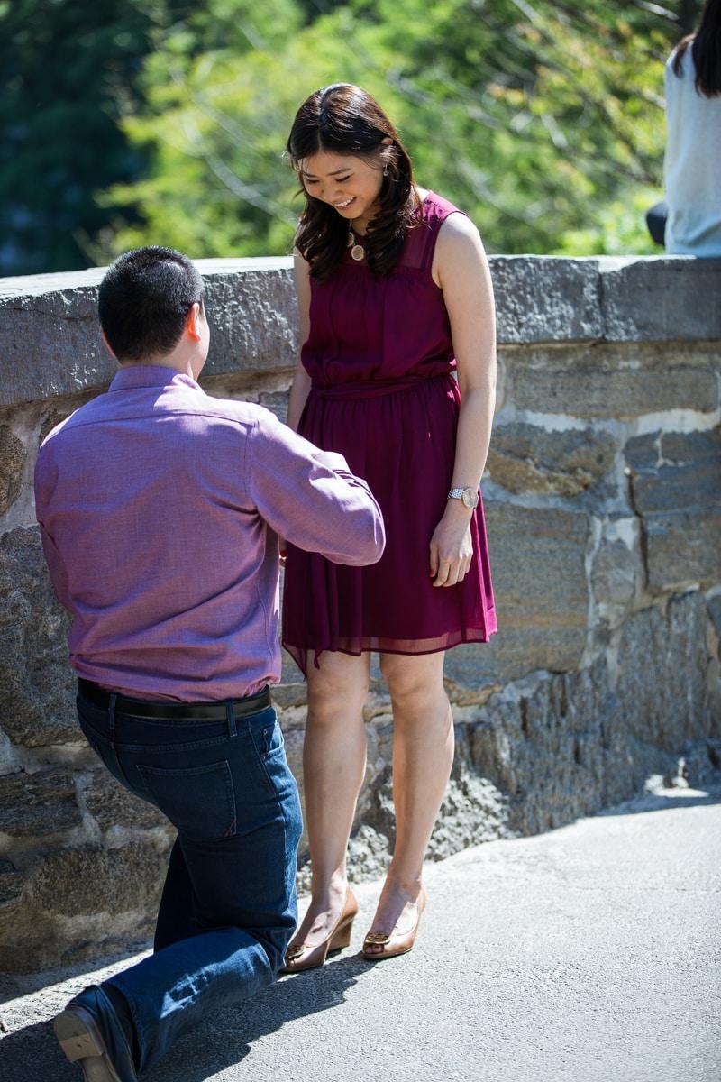 Photo Gapstow bridge marriage proposal | VladLeto