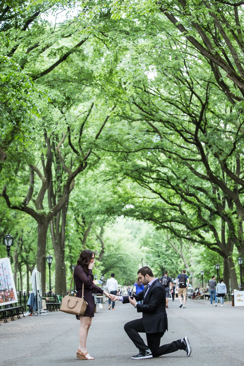 Photo 5 Secret marriage proposal in The Mall, Central Park | VladLeto