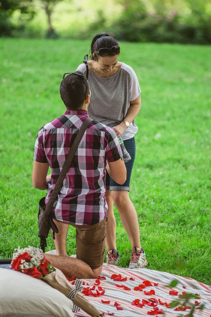 Photo 7 Picnic Proposal in Central Park | VladLeto