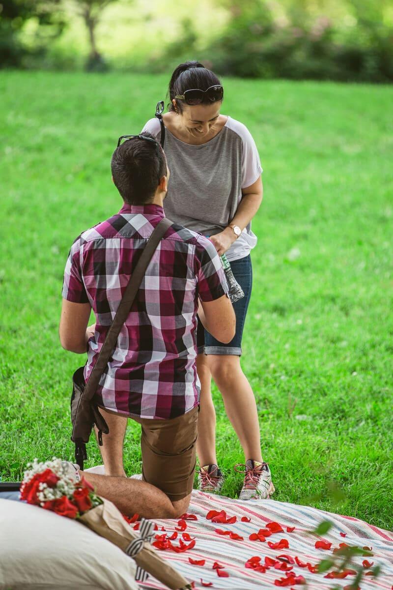 Photo 9 Central Park Picnic Proposal