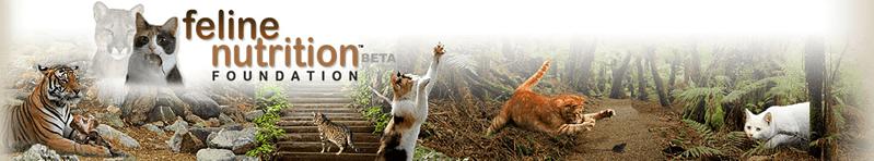 Feline Nutrition Foundation