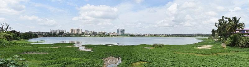 bangalore city view