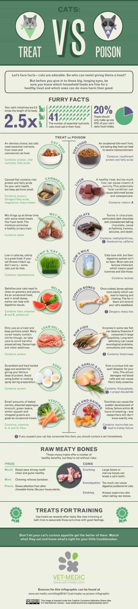 cat treat vs poison infographic
