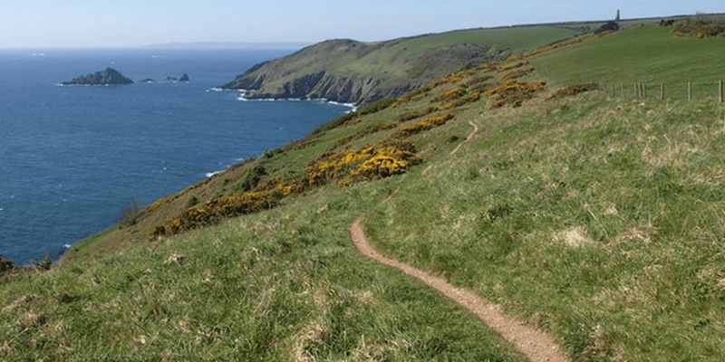 south hams coastal walk