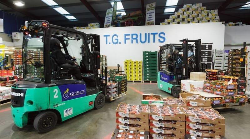 TG Fruits Mitsubishi Forklifts from Alto Handling