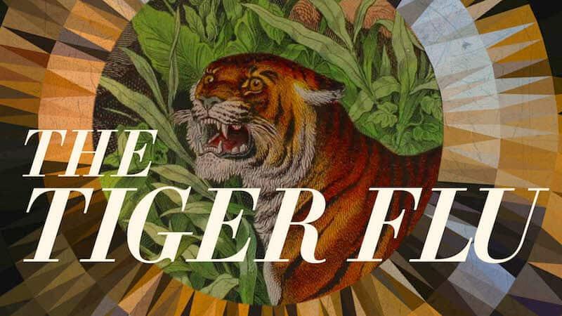 The Tiger Flu: a novel by Larissa Lai