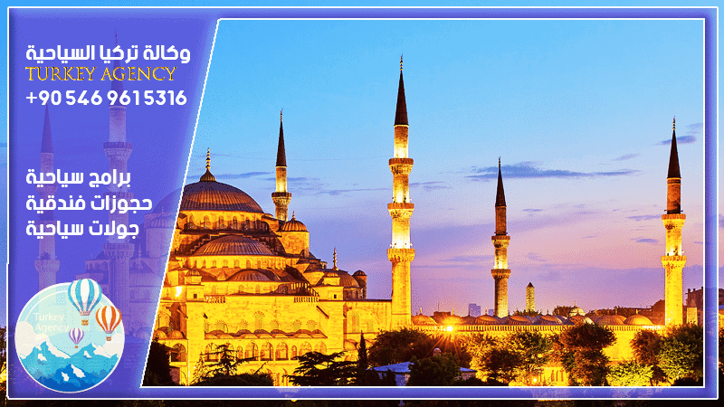 سائق في اسطنبول المسافرون العرب