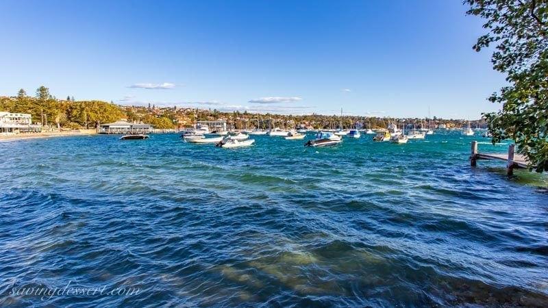 Watsons Bay with sailboats