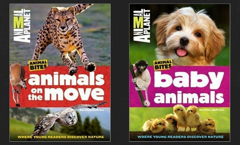 Baby Animals and Animals on the Move Animal Bites Series Review