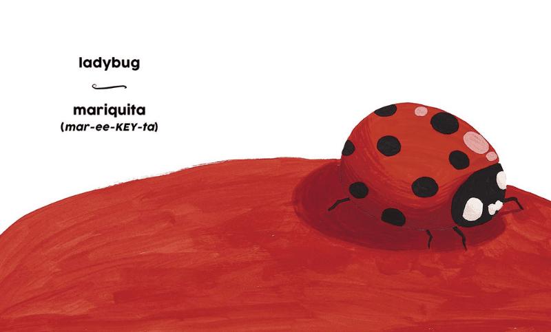 Art Bilingual Spanish Ladybug