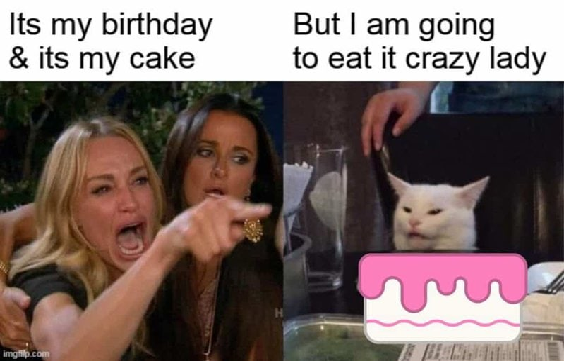cake cat birthday meme
