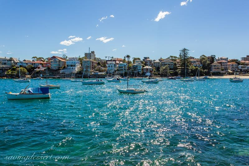 Little Manly Cove with sailboats and houses, Sydney Australia