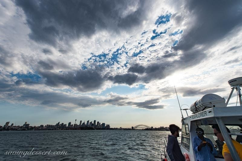 Sunset shot of downtown Sydney from the whale watching excursion boat