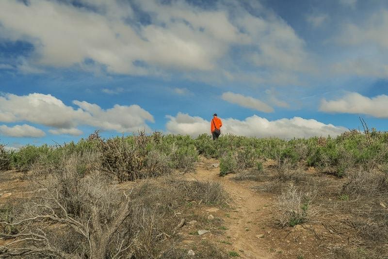 Buddy hiking through the Posi Reccreation Area