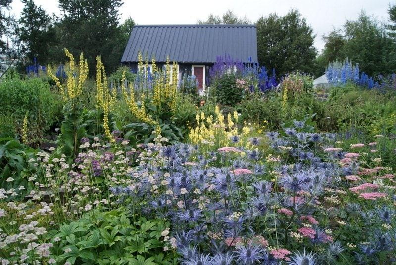 Best-of-North-Iceland - Botanical-Garden-Akureyri.jpg
