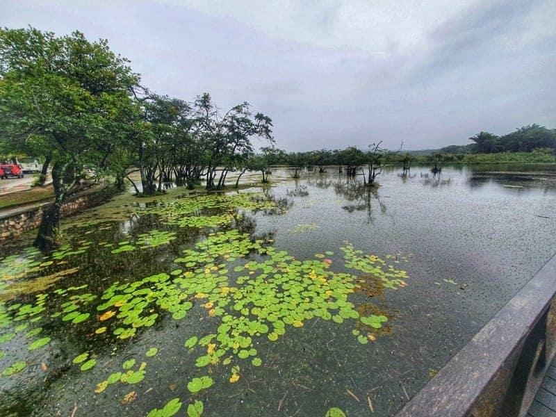 Lago do Parque Klaus Peters - Praia do Forte Bahia - Fonte: Arquivo Pessoal