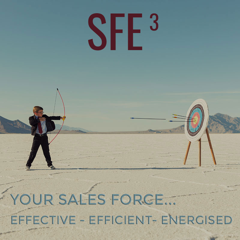 Sales Force Effectivity Online Course | enRich Your Results Training and Development