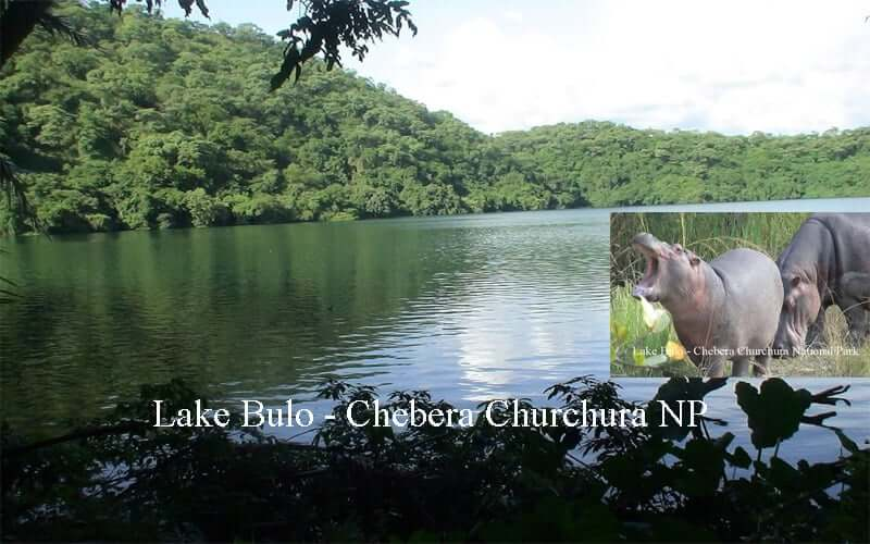 Chebera Churchura National Park