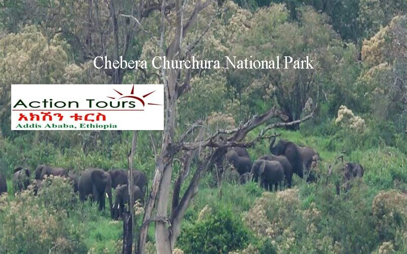 https://en.wikipedia.org/wiki/Chebera_Churchura_National_Park