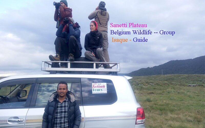 Hiking  in Bale Mountains National Park