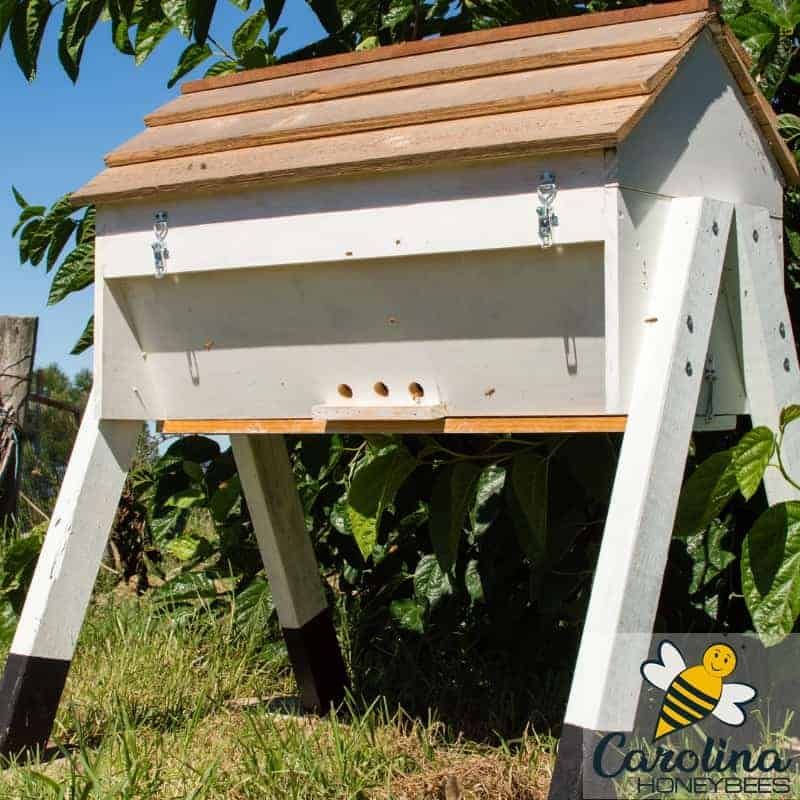 A top bar hive - one style of beehive