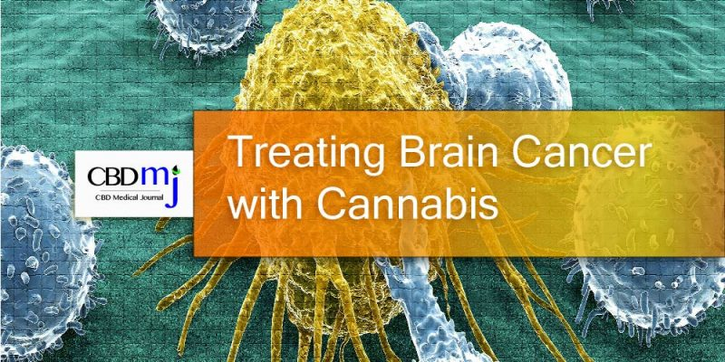 Treating Brain Cancer with Cannabis, CBD Medical Journal