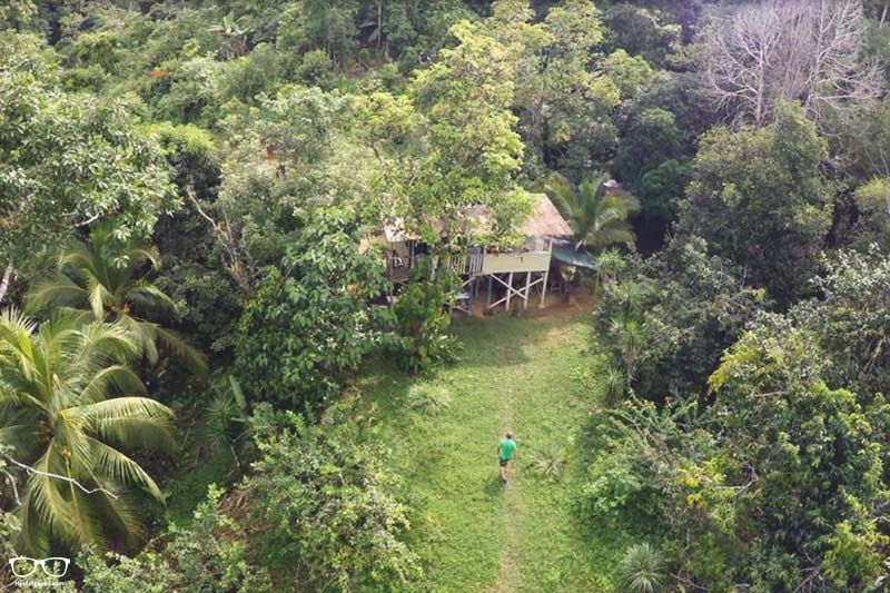 Bolita Rainforest Hostel and Cabinas one of the best hostels in Costa Rica